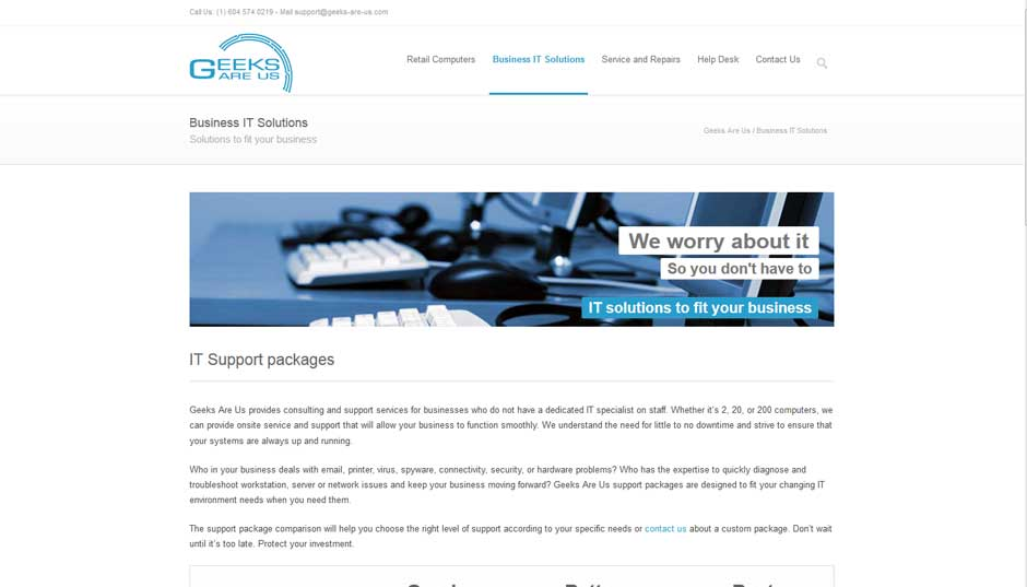 geeks are us website it solutions sample page